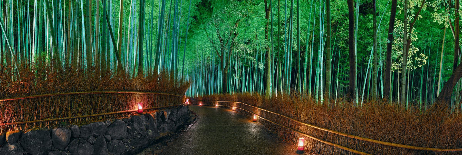Path lined by a yellow grass fence leading through a green bamboo forest lit up at night by lanterns in Kyoto Japan
