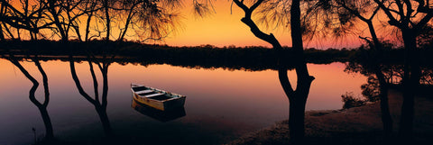 Old wooden row boat in between trees on the bank floating in the Noosa River of Australia at sunrise