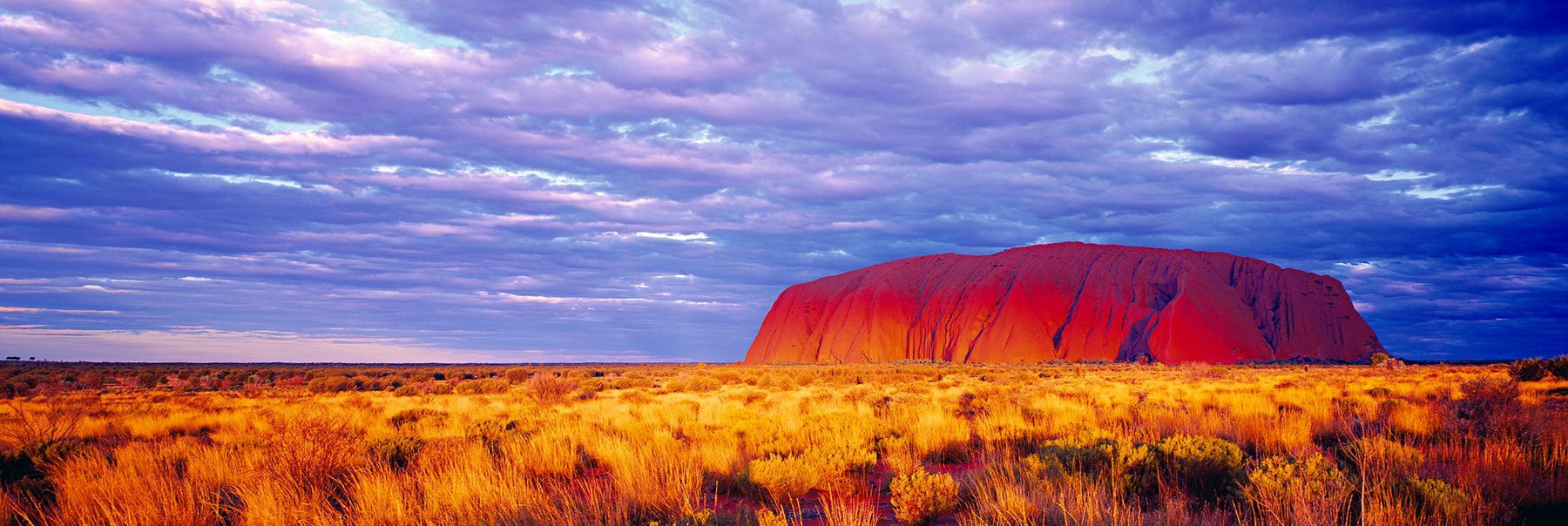Uluru Rock a sandstone monolith in the Northern Territory desert of Australia at sunset