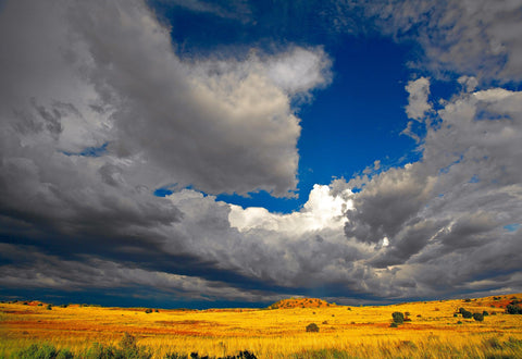 Storm rolling into the yellow brush plains of Canyonlands National Park Utah