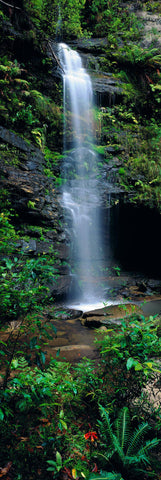 Tropical waterfall pouring into a river in the Blue Mountains National Park