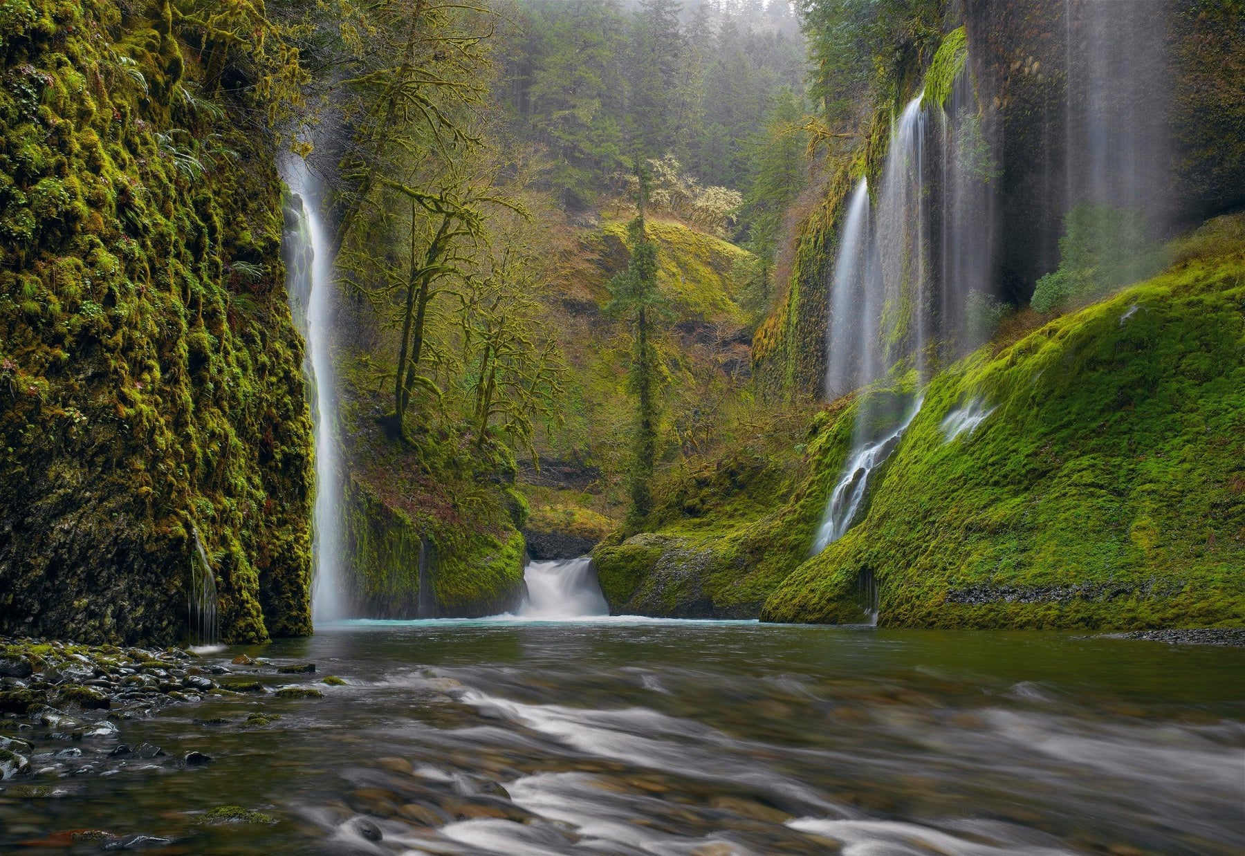 Waterfalls flowing down the moss covered Colombia River Gorge into the rushing waters of a river in Oregon