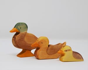 Wooden Female Duck Swimming - Eric & Albert