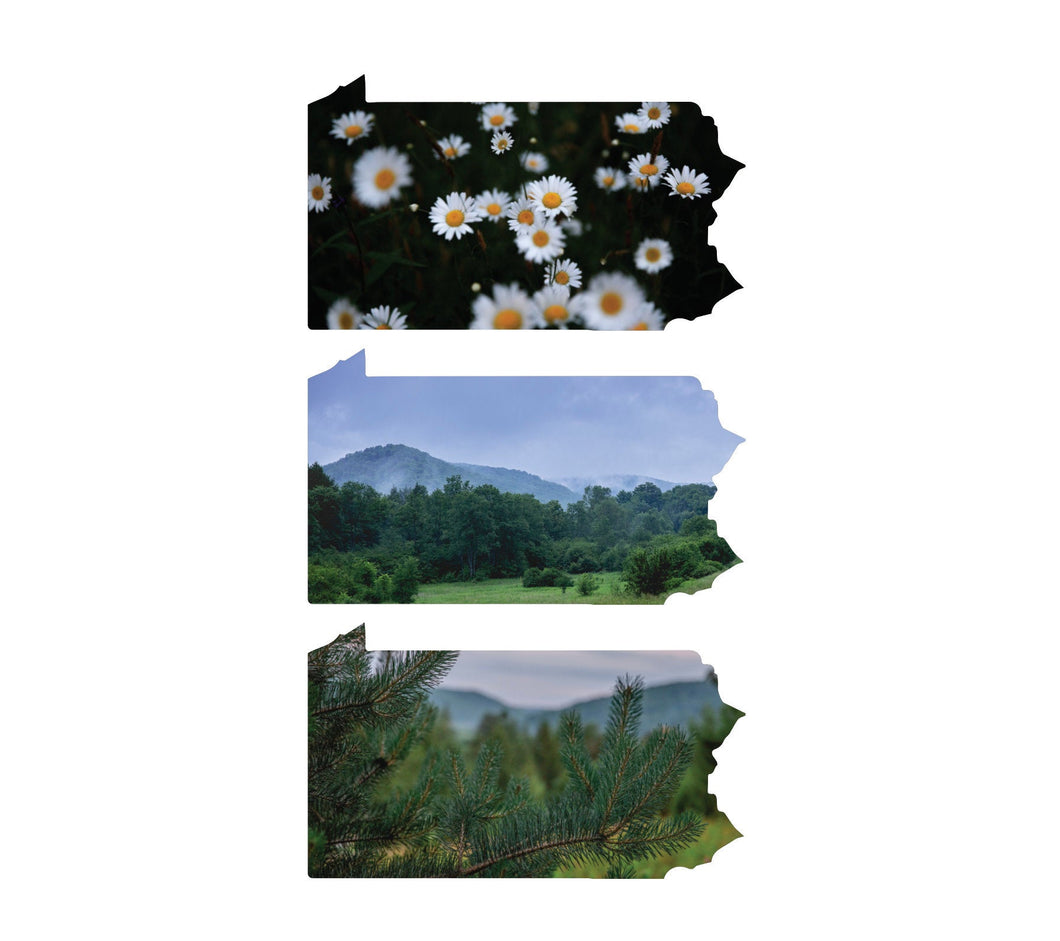 Pennsylvania Decals - Die Cut - Pennsylvania Scenery and Wildflowers - Canoe Place Creative