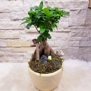 Easter Bonsai Tree