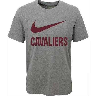 Nike Men's Cleveland Cavaliers Dri-FIT Grey T-Shirt