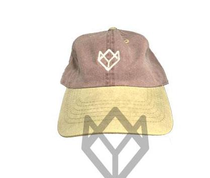 Team Swish Dad Hat - Brown/Yellow