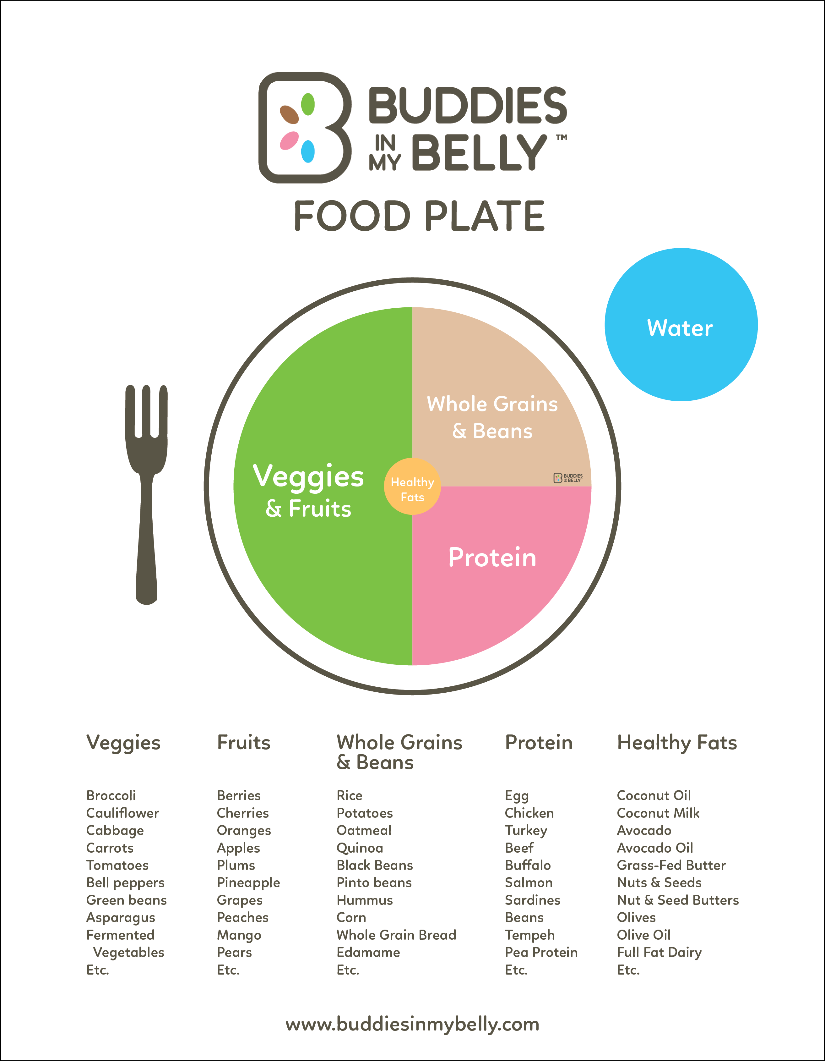 Resources Buddies In My Belly Avocadoseeddiagram1 Download The Food Plate Here