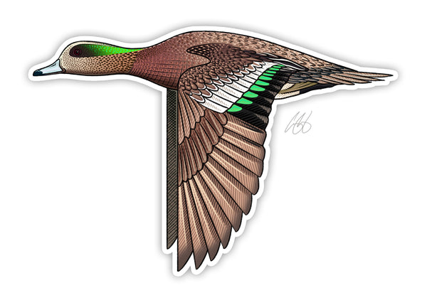 American Wigeon Decal