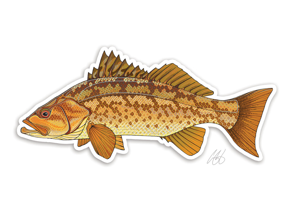 Calico Bass Decal