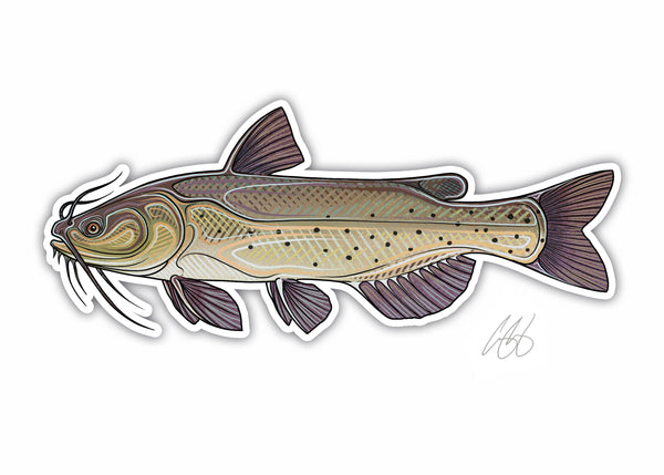 Catfish Decal