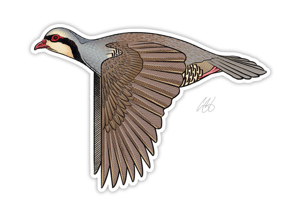 Chukar Decal