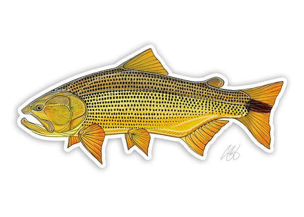 Golden Dorado Decal
