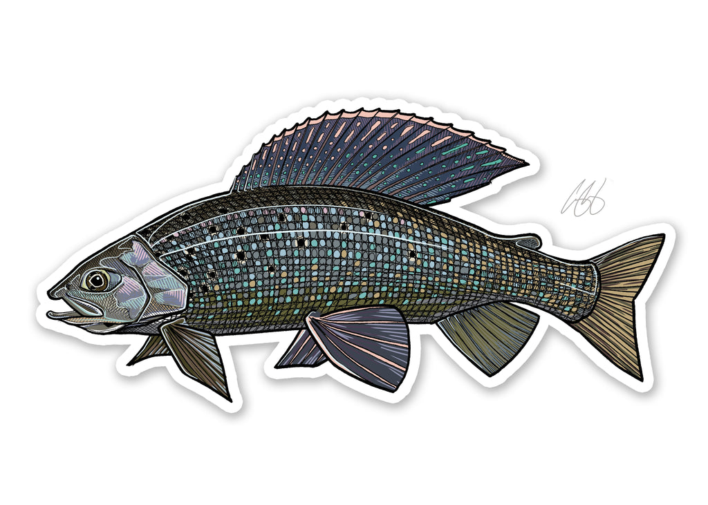 Grayling Decal