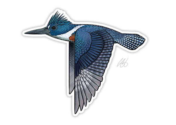 Kingfisher Decal