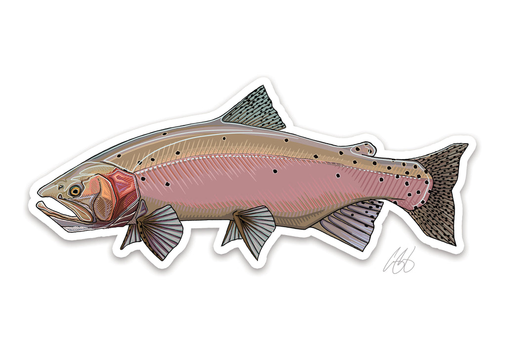 Lahontan Cutthroat Decal