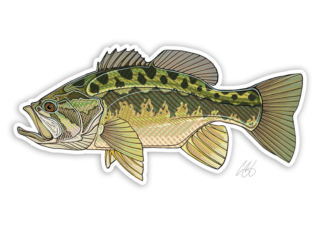 Largemouth Bass Decal