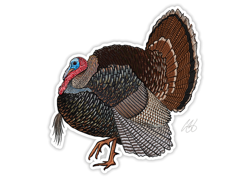Merriam's Turkey Decal