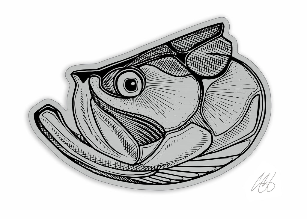 Brushed Alloy Tarpon Decal