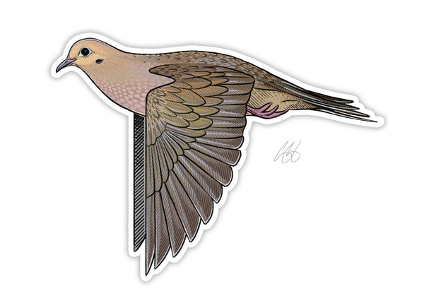 Mourning Dove Decal