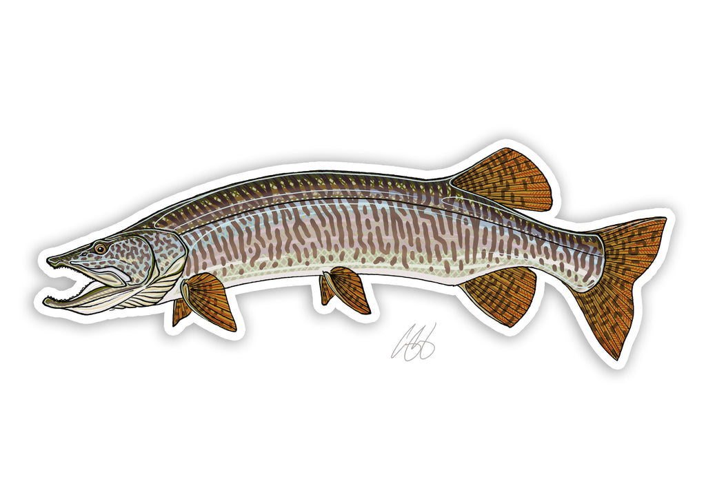 Muskie Decal