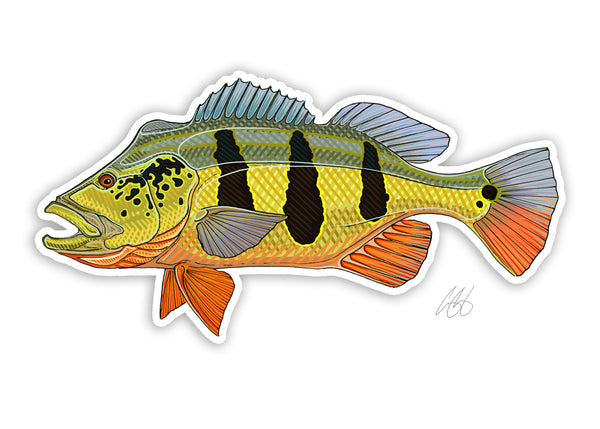 Peacock Bass Decal