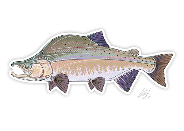 Pink Salmon Decal