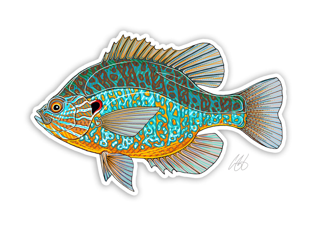 Pumpkinseed Decal