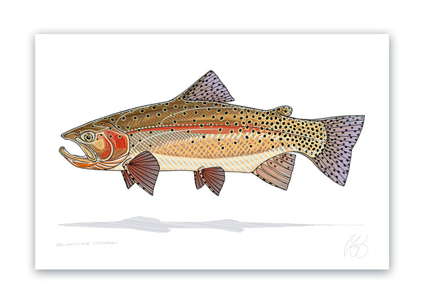 Yellowstone Cutthroat Print