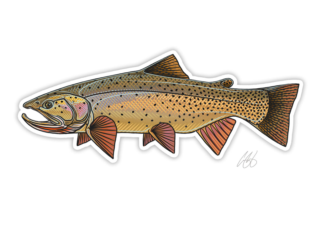 Snake River Cutthroat Decal