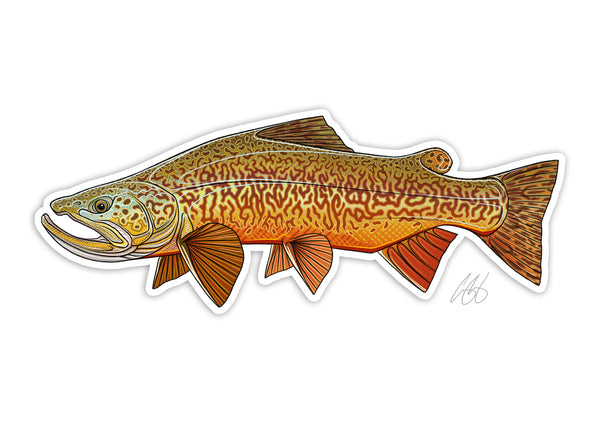 Tiger Trout Decal