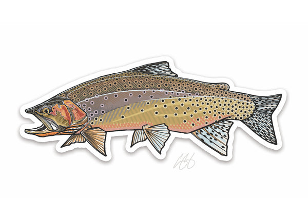 Westslope Cutthroat Decal