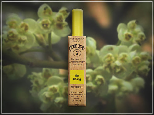 May Chang Scentlogs natural soy wax melts uplifting, sweet, sharp, lemongrass-like but a bit sweeter. Handmade by i-Aroma