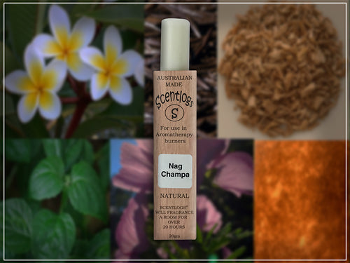 nag champa  scentlog wax melts - the popular incense scent without the pollution.