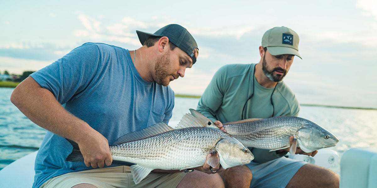 5 Tips for Catching Redfish on Fly image