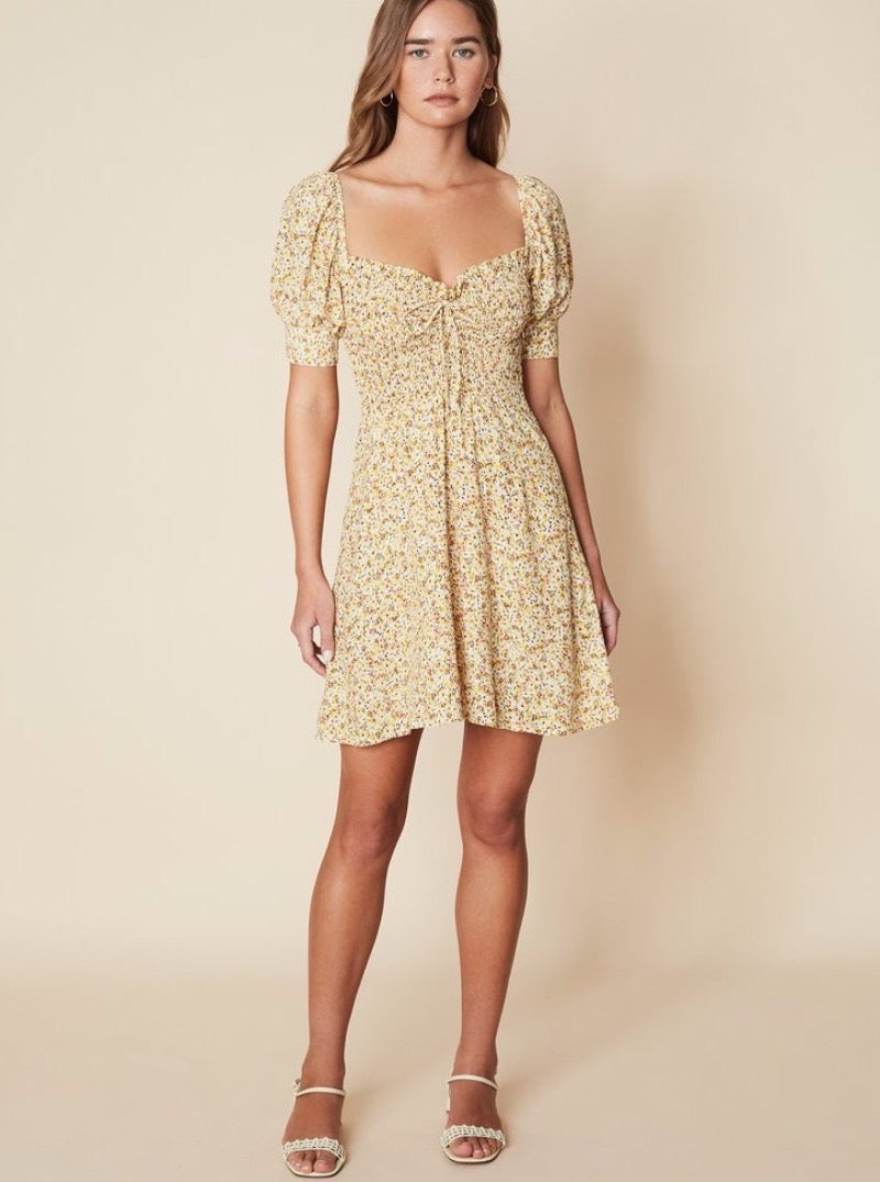 Dulcia Mini Dress La Reverie Floral Print