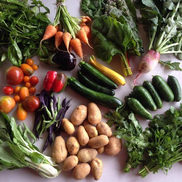 Vegetable Box Subscription