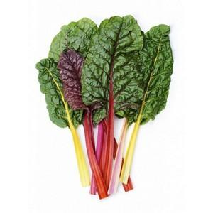 Rainbow Chard - Seedling - Beechworth Natural Farm