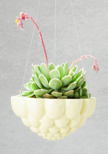 Round Jelly Planter - Yellow