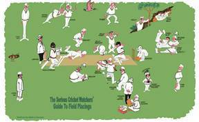 Tea Towel - Cricket