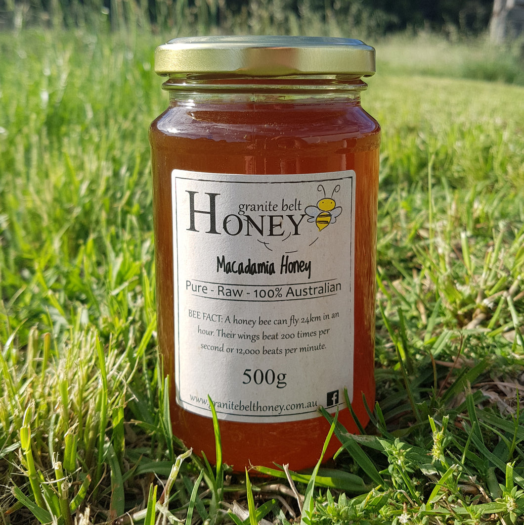 Macadamia Honey 500g Jar