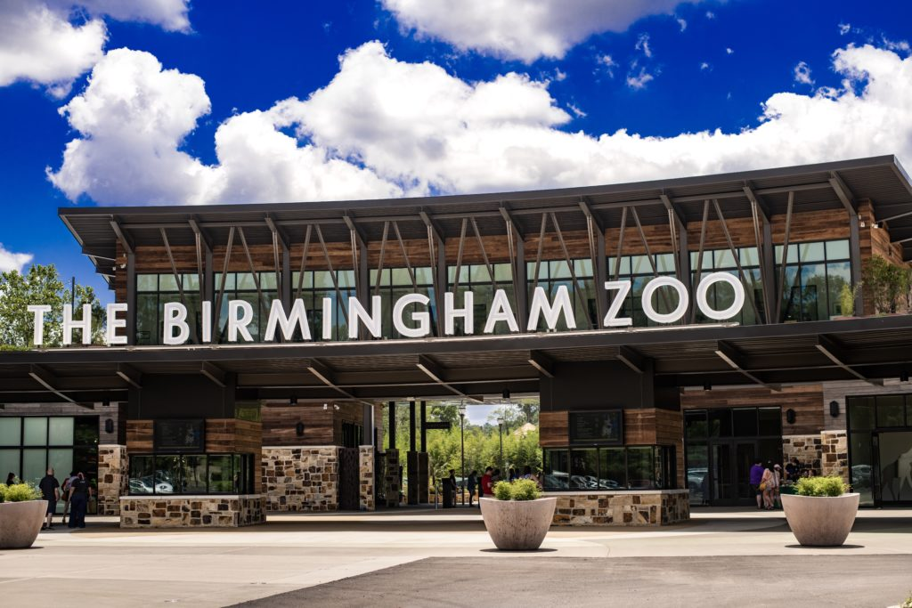 "My ""Best of Birmingham:"" Food and Activities with your Kids!"