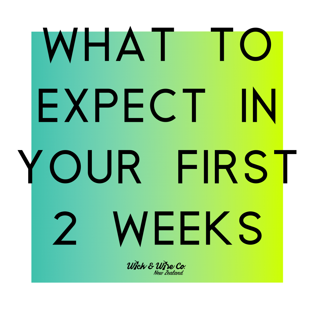 What to expect in your first two weeks!
