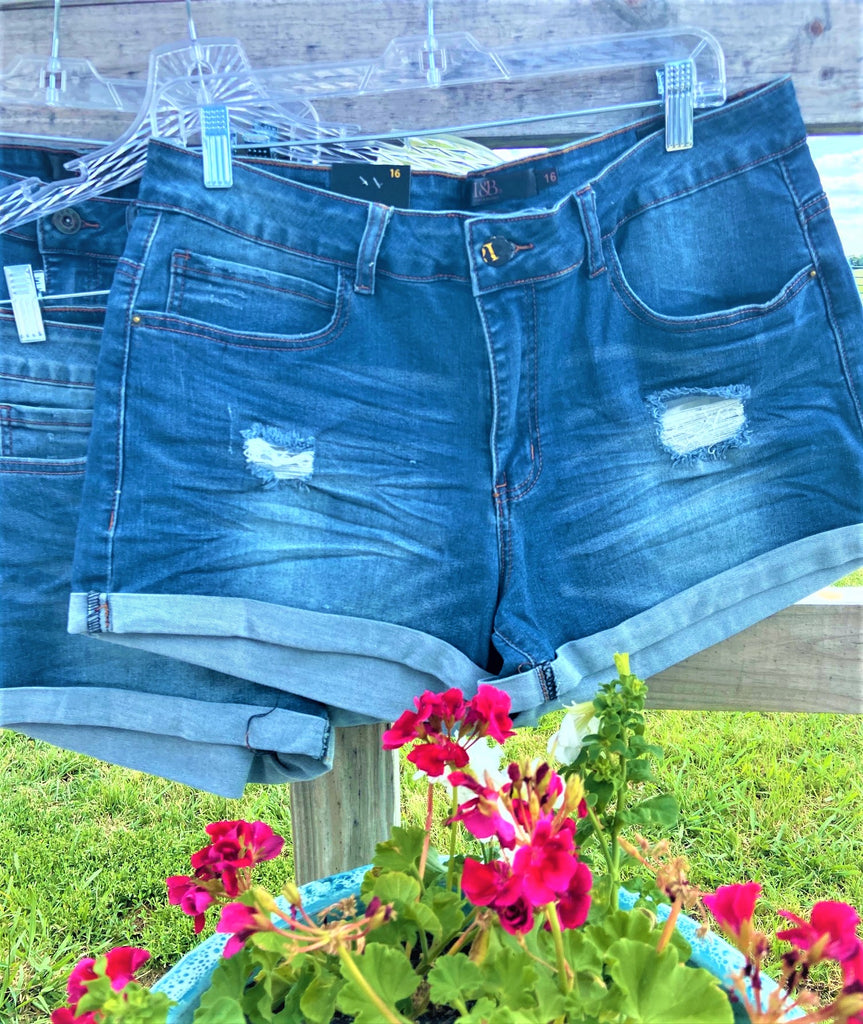 Mid Wash Distressed Denim Shorts Reg