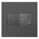 Adorne by Legrand AWP2GMG4 - MAGNESIUM 2-GANG WALL PLATE
