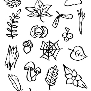 Autumn Nature Hunt and Colouring Sheet