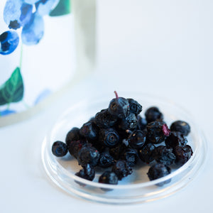 ARCTIC NATURAL PRODUCTS | Dried Berries