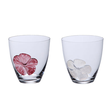 SUGAHARA | SGHR Pair Glass with Paulownia Box Gift - BLUME
