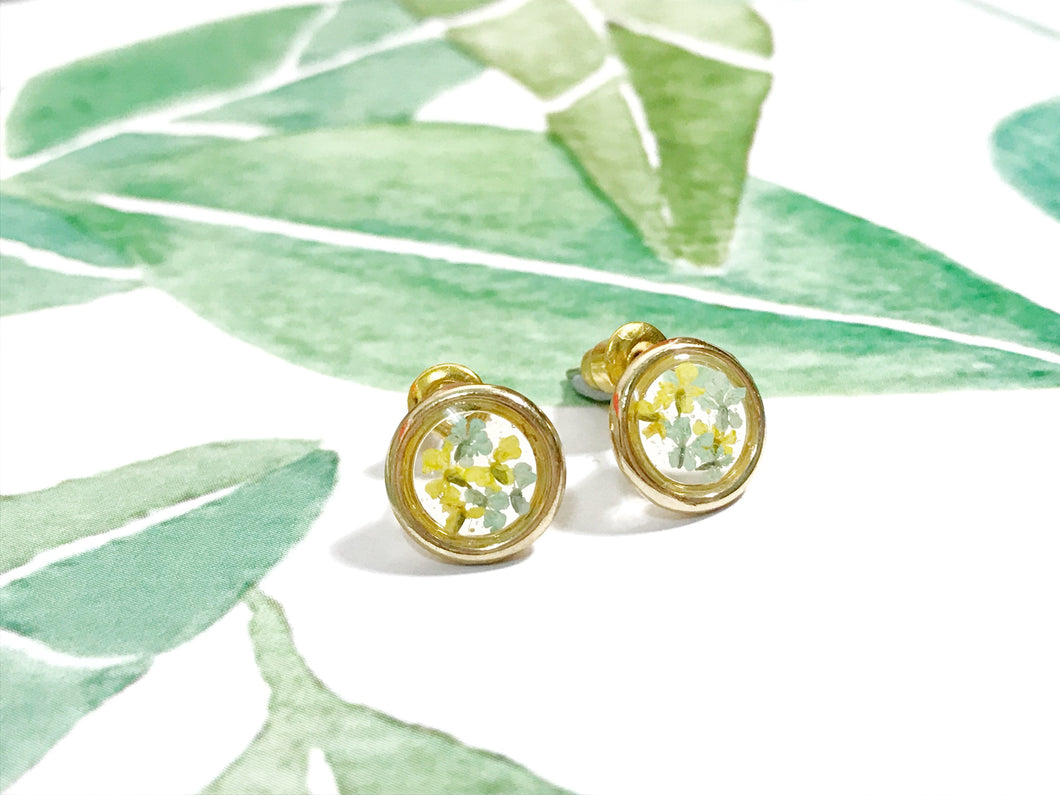 HEI THERE | Mini Circle Earrings | Yellow & Tiffany
