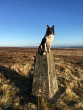 Day Walks in the South Pennines by Paul Besley